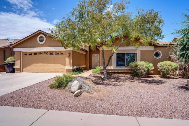 10732 W Echo Lane, Peoria, AZ 85345 (MLS #5952004) :: Nate Martinez Team