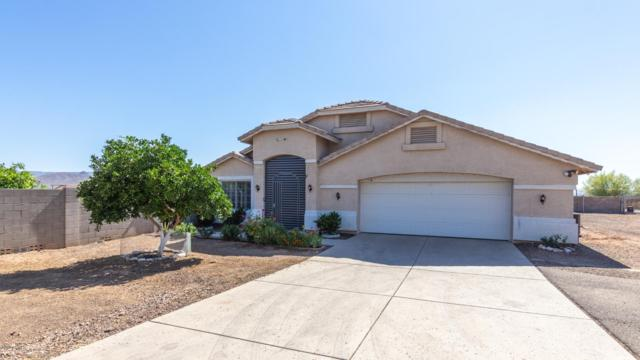 414 W Old Paint Trail, Phoenix, AZ 85086 (MLS #5952019) :: CC & Co. Real Estate Team