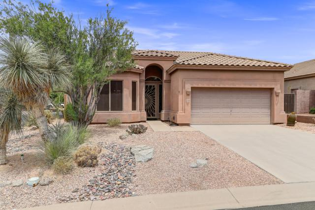 7530 E Sayan Street, Mesa, AZ 85207 (MLS #5952039) :: CC & Co. Real Estate Team
