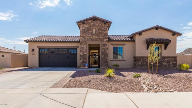 1248 N Chatsworth Street, Mesa, AZ 85207 (MLS #5952085) :: Keller Williams Realty Phoenix