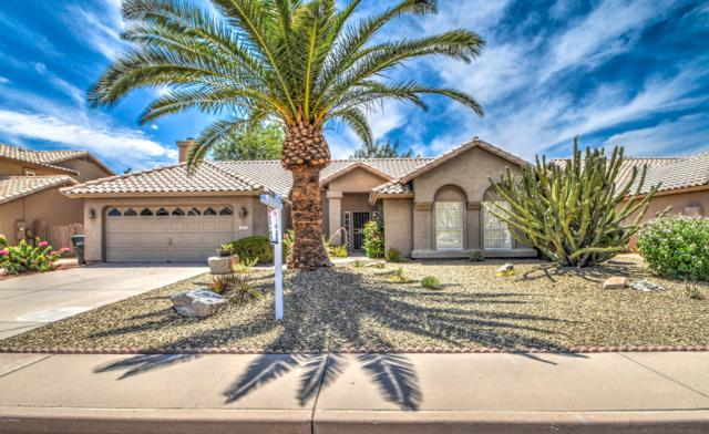 18808 N 36TH Street, Phoenix, AZ 85050 (MLS #5952103) :: Riddle Realty