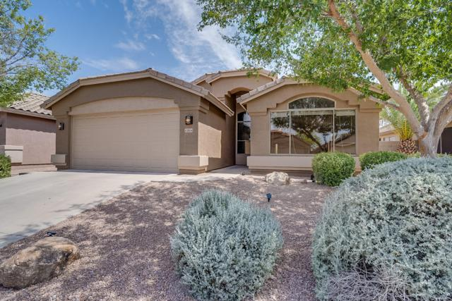 43854 W Baker Drive, Maricopa, AZ 85138 (MLS #5952111) :: Yost Realty Group at RE/MAX Casa Grande