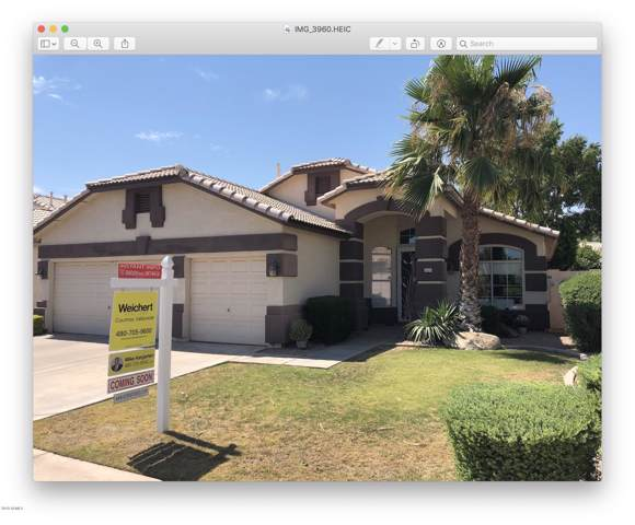4809 W Erie Street, Chandler, AZ 85226 (MLS #5952113) :: Conway Real Estate
