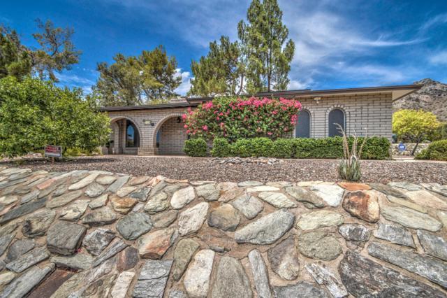 2440 E Squaw Peak Drive, Phoenix, AZ 85016 (MLS #5952115) :: Keller Williams Realty Phoenix