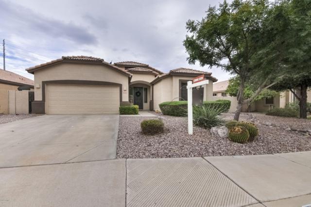 3227 E Lark Court, Gilbert, AZ 85297 (MLS #5952130) :: CC & Co. Real Estate Team