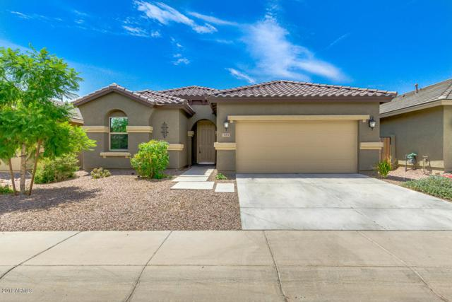 519 E Castle Rock Road, San Tan Valley, AZ 85143 (MLS #5952147) :: The Everest Team at eXp Realty