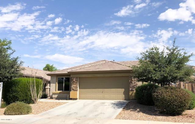 19694 W Morning Glory Street, Buckeye, AZ 85326 (MLS #5952163) :: The Property Partners at eXp Realty