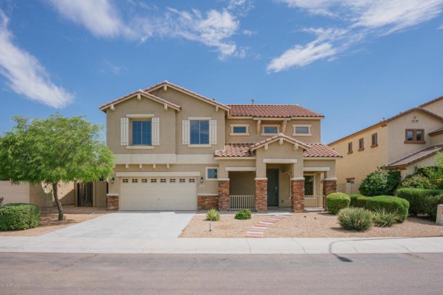 12201 W Locust Lane, Avondale, AZ 85323 (MLS #5952165) :: Brett Tanner Home Selling Team