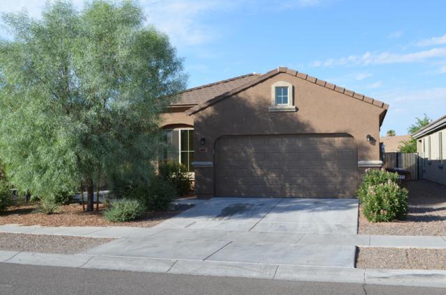 8883 W Cameron Drive, Peoria, AZ 85345 (MLS #5952166) :: My Home Group