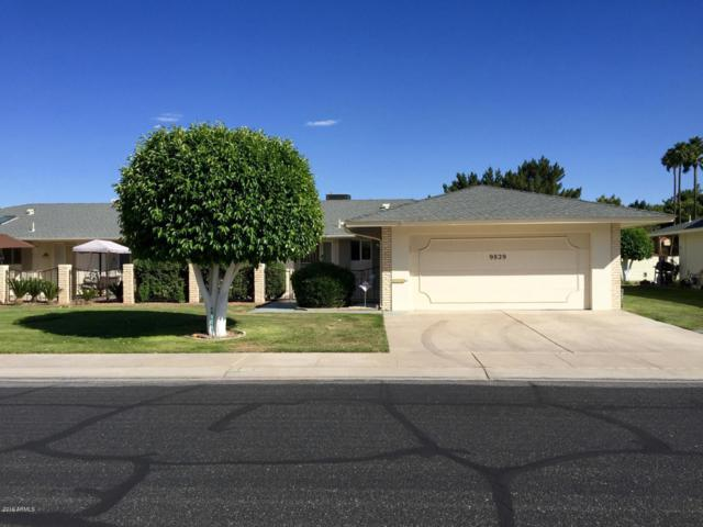 9829 N Balboa Drive, Sun City, AZ 85351 (MLS #5952179) :: Keller Williams Realty Phoenix