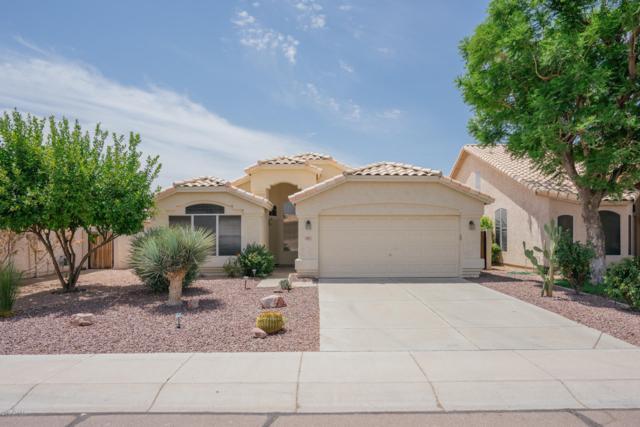 9821 W Tonopah Drive, Peoria, AZ 85382 (MLS #5952181) :: Nate Martinez Team