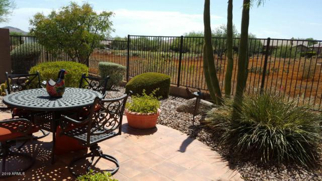 41024 N Noble Hawk Way, Anthem, AZ 85086 (MLS #5952183) :: Team Wilson Real Estate