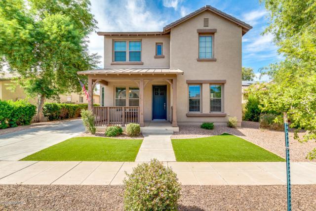 15402 W Old Oak Lane, Surprise, AZ 85379 (MLS #5952191) :: CC & Co. Real Estate Team