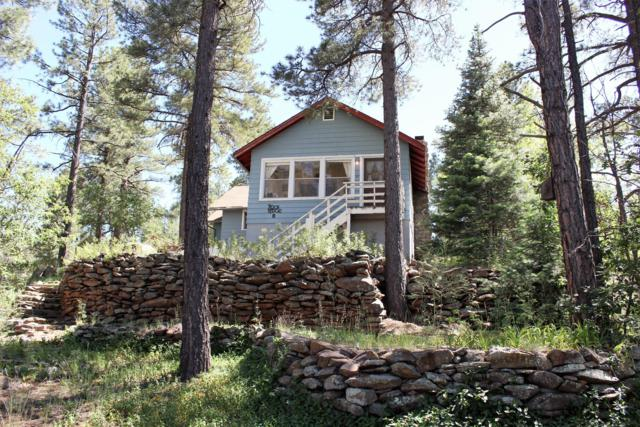 301 Lake View Drive, Mormon Lake, AZ 86038 (MLS #5952193) :: CC & Co. Real Estate Team