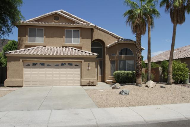 20375 N 53RD Avenue, Glendale, AZ 85308 (MLS #5952219) :: The Laughton Team