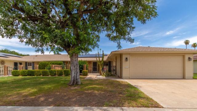 10106 W Kingswood Circle, Sun City, AZ 85351 (MLS #5952226) :: Keller Williams Realty Phoenix