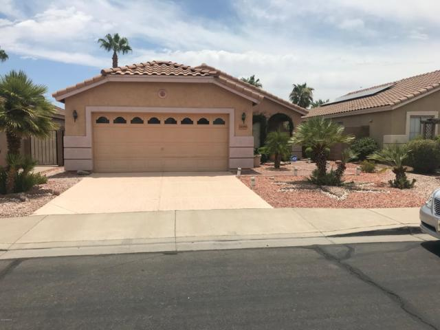 14705 W Lamoille Drive, Surprise, AZ 85374 (MLS #5952238) :: CC & Co. Real Estate Team