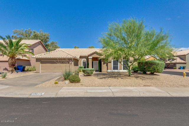19029 N 42ND Street, Phoenix, AZ 85050 (MLS #5952256) :: Riddle Realty