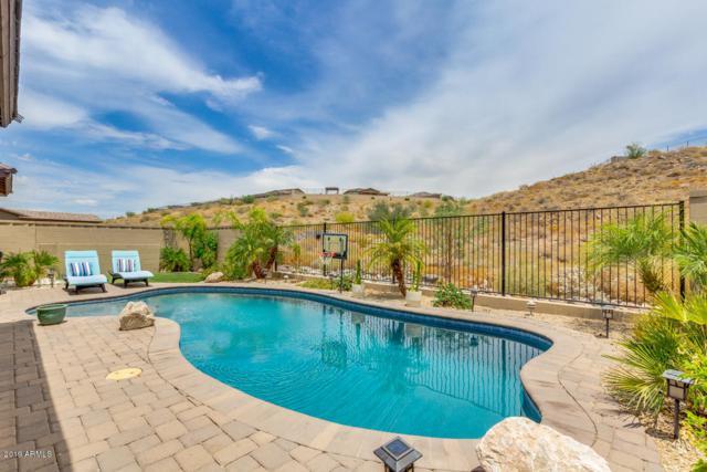 26115 N 106TH Drive, Peoria, AZ 85383 (MLS #5952274) :: CC & Co. Real Estate Team