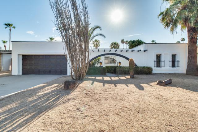 15020 N 7TH Drive, Phoenix, AZ 85023 (MLS #5952275) :: Revelation Real Estate