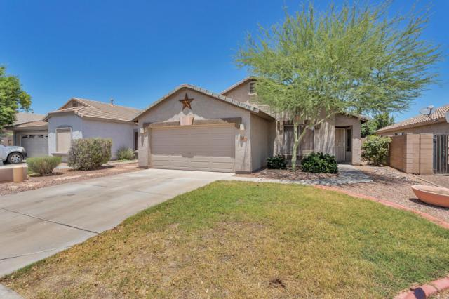 16226 W Young Street, Surprise, AZ 85374 (MLS #5952281) :: CC & Co. Real Estate Team