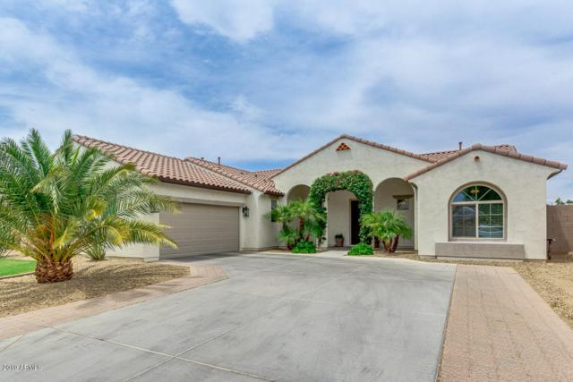 21924 E Domingo Road, Queen Creek, AZ 85142 (MLS #5952284) :: Revelation Real Estate