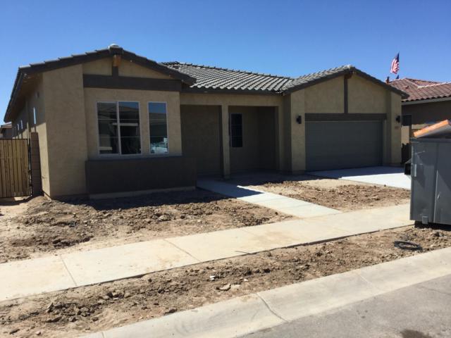 23098 E Via Del Sol, Queen Creek, AZ 85142 (MLS #5952314) :: Lux Home Group at  Keller Williams Realty Phoenix