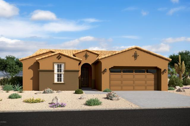 1315 E Aquarius Place, Chandler, AZ 85249 (MLS #5952326) :: CC & Co. Real Estate Team