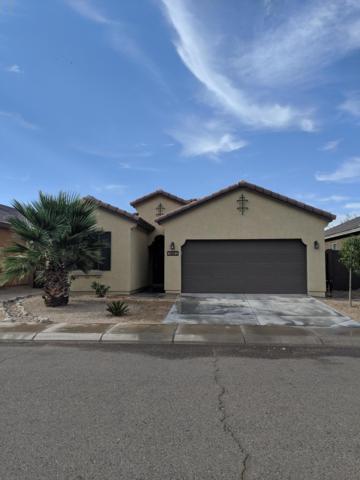 3882 E Alamo Street, San Tan Valley, AZ 85140 (MLS #5952336) :: The Kenny Klaus Team