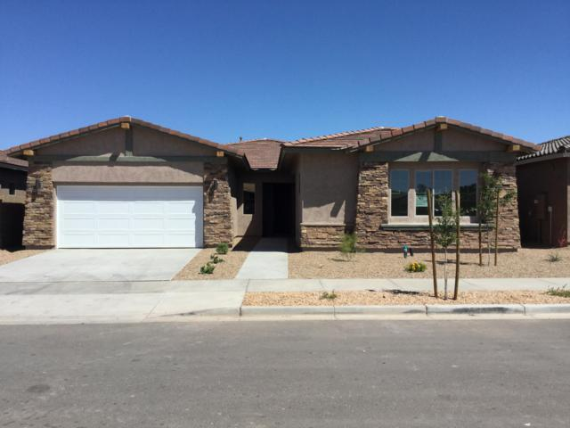 22951 E Via Del Oro, Queen Creek, AZ 85142 (MLS #5952341) :: Revelation Real Estate