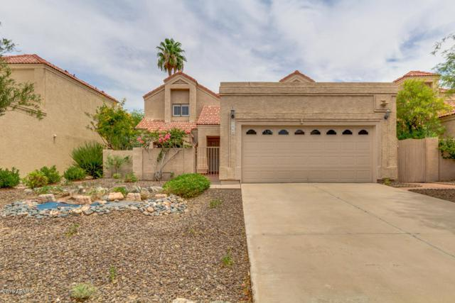 3960 E White Aster Street, Phoenix, AZ 85044 (MLS #5952349) :: Revelation Real Estate