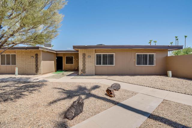 11017 W Topaz Drive, Sun City, AZ 85351 (MLS #5952353) :: The W Group