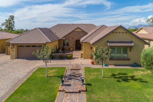 1280 E Via Nicola, San Tan Valley, AZ 85140 (MLS #5952360) :: Yost Realty Group at RE/MAX Casa Grande