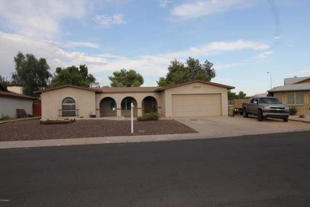 8803 N 45TH Drive, Glendale, AZ 85302 (MLS #5952361) :: The Carin Nguyen Team
