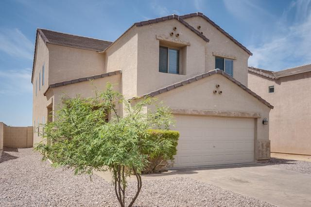 13287 E Primrose Lane, Florence, AZ 85132 (MLS #5952415) :: Revelation Real Estate