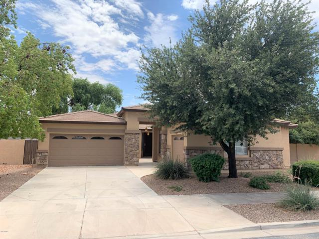 18491 E Ashridge Drive, Queen Creek, AZ 85142 (MLS #5952431) :: Nate Martinez Team