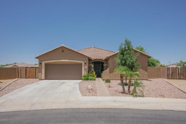 16040 W Desert Flower Drive, Goodyear, AZ 85395 (MLS #5952445) :: The Property Partners at eXp Realty