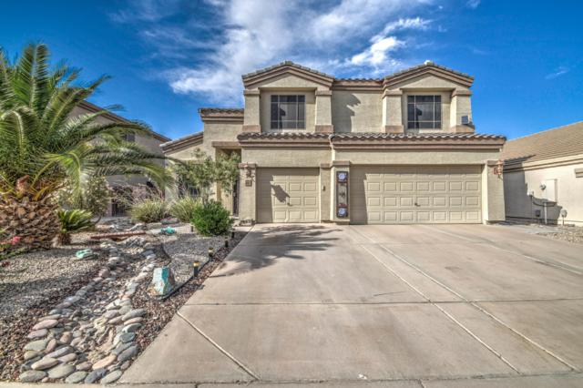 3494 W Allens Peak Drive, Queen Creek, AZ 85142 (MLS #5952447) :: The Kenny Klaus Team
