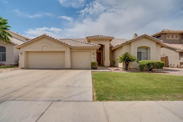 7161 W Dreyfus Drive, Peoria, AZ 85381 (MLS #5952450) :: The Pete Dijkstra Team