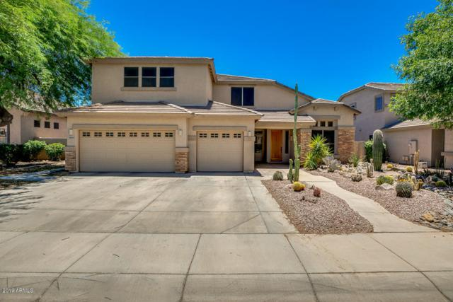2609 E Firestone Drive, Chandler, AZ 85249 (MLS #5952452) :: Riddle Realty