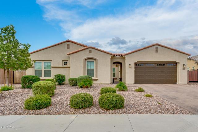 2262 E Tomahawk Drive, Gilbert, AZ 85298 (MLS #5952473) :: Riddle Realty