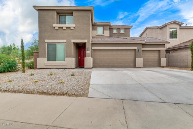 10431 W Louise Drive, Peoria, AZ 85383 (MLS #5952486) :: The Pete Dijkstra Team