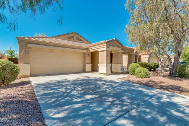 9859 W Salter Drive, Peoria, AZ 85382 (MLS #5952492) :: The Pete Dijkstra Team