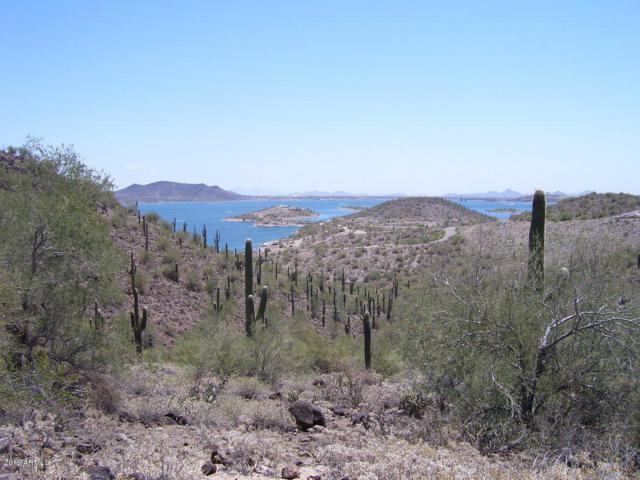 0 N Castle Hot Spring Road, Morristown, AZ 85342 (MLS #5952515) :: Revelation Real Estate