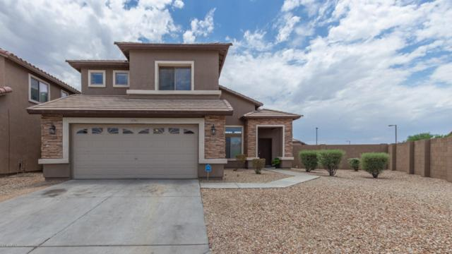 25765 W Hess Avenue, Buckeye, AZ 85326 (MLS #5952531) :: The Kenny Klaus Team