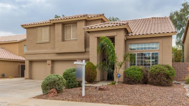 310 N Bullmoose Drive, Chandler, AZ 85224 (MLS #5952533) :: Revelation Real Estate