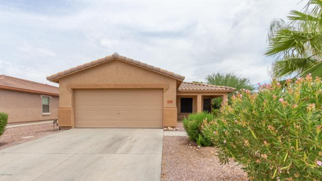 24968 W Dove Trail, Buckeye, AZ 85326 (MLS #5952539) :: The Kenny Klaus Team