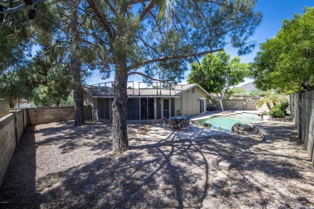4038 E Walatowa Street, Phoenix, AZ 85044 (MLS #5952541) :: Revelation Real Estate