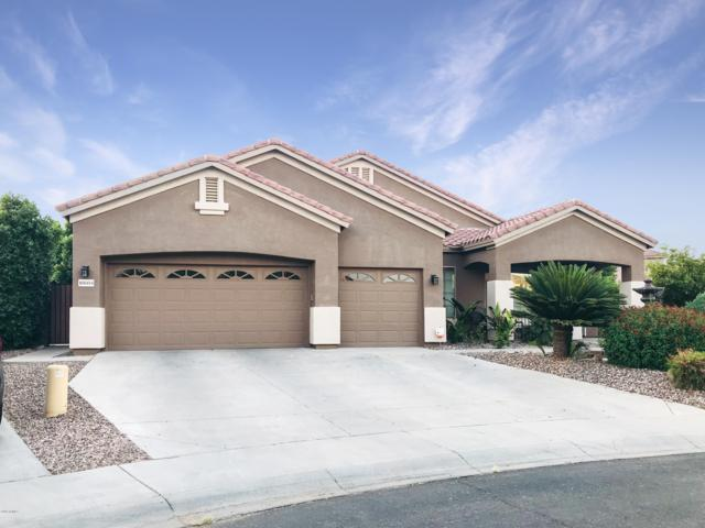 10604 E Keats Avenue, Mesa, AZ 85209 (MLS #5952568) :: The Everest Team at eXp Realty