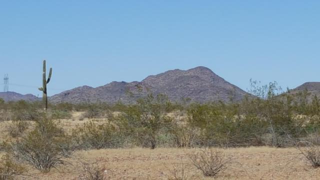 30598 W Lone Mountain Road, Wittmann, AZ 85361 (MLS #5952573) :: The Bill and Cindy Flowers Team